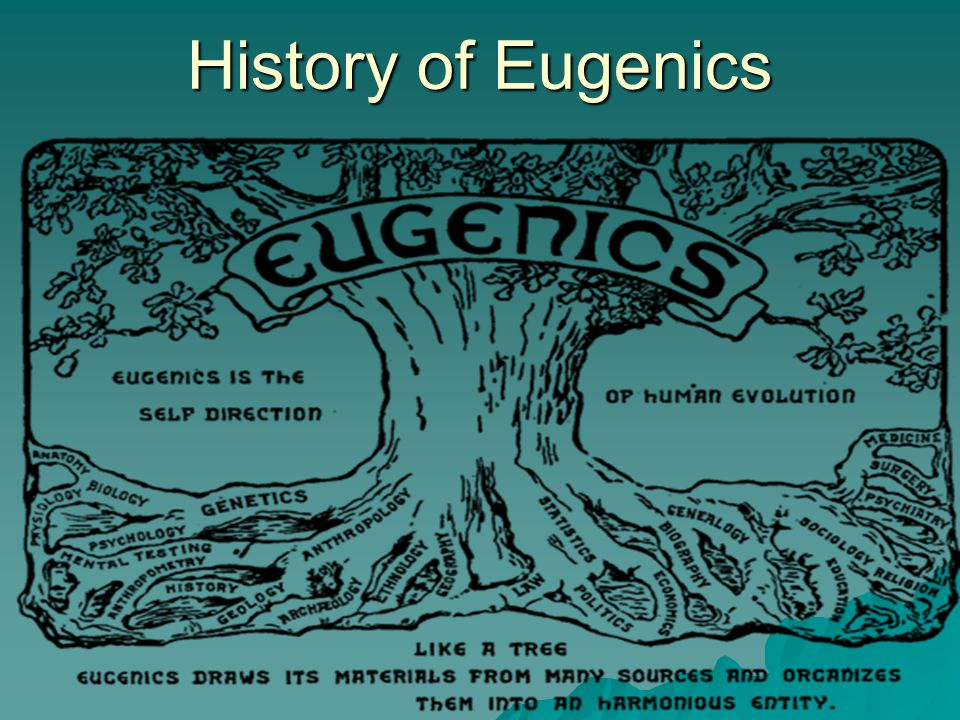 history of eugenics Nazi social policies were strongly influenced by the eugenics movement  eugenics was a social theory popular among many scientists, philosophers,  academics.