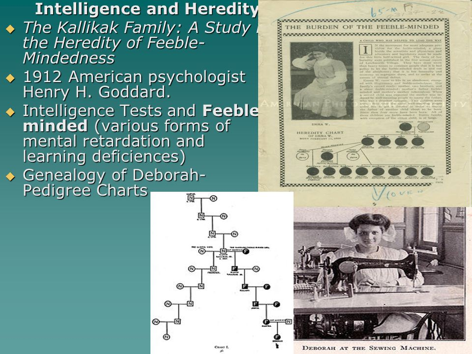 Intelligence and Heredity