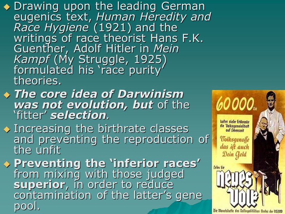 Drawing upon the leading German eugenics text, Human Heredity and Race Hygiene (1921) and the writings of race theorist Hans F.K. Guenther, Adolf Hitler in Mein Kampf (My Struggle, 1925) formulated his 'race purity' theories.