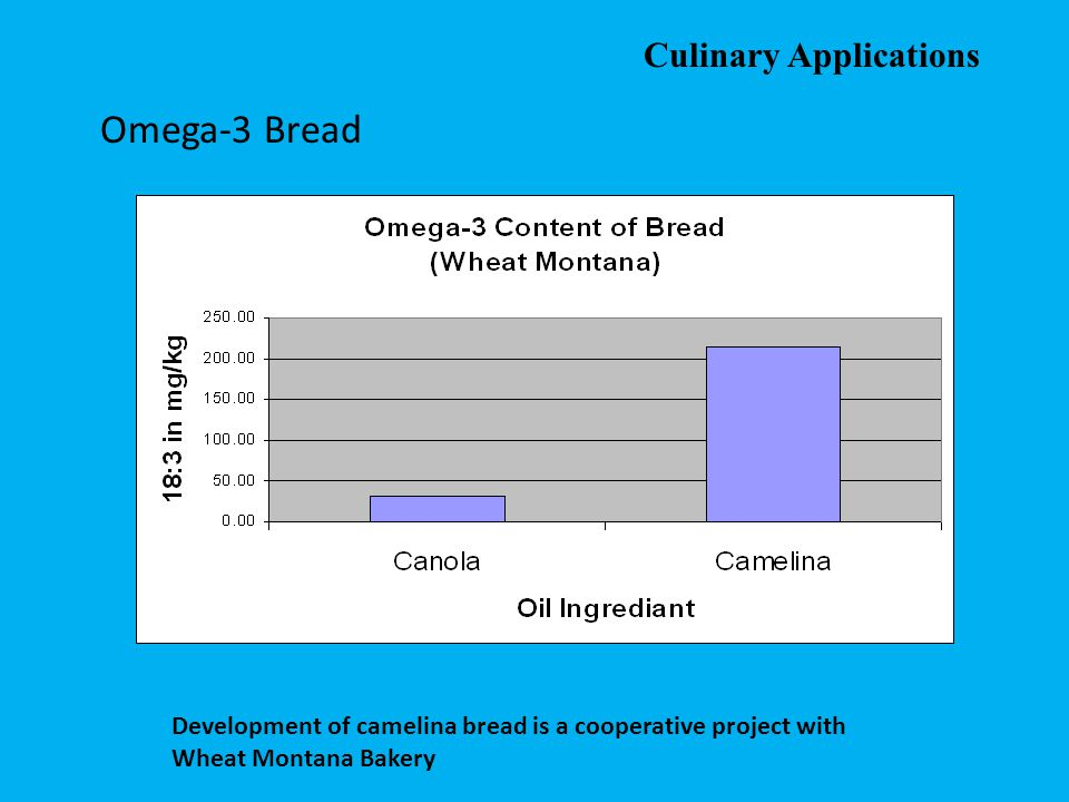 Omega-3 Bread Culinary Applications