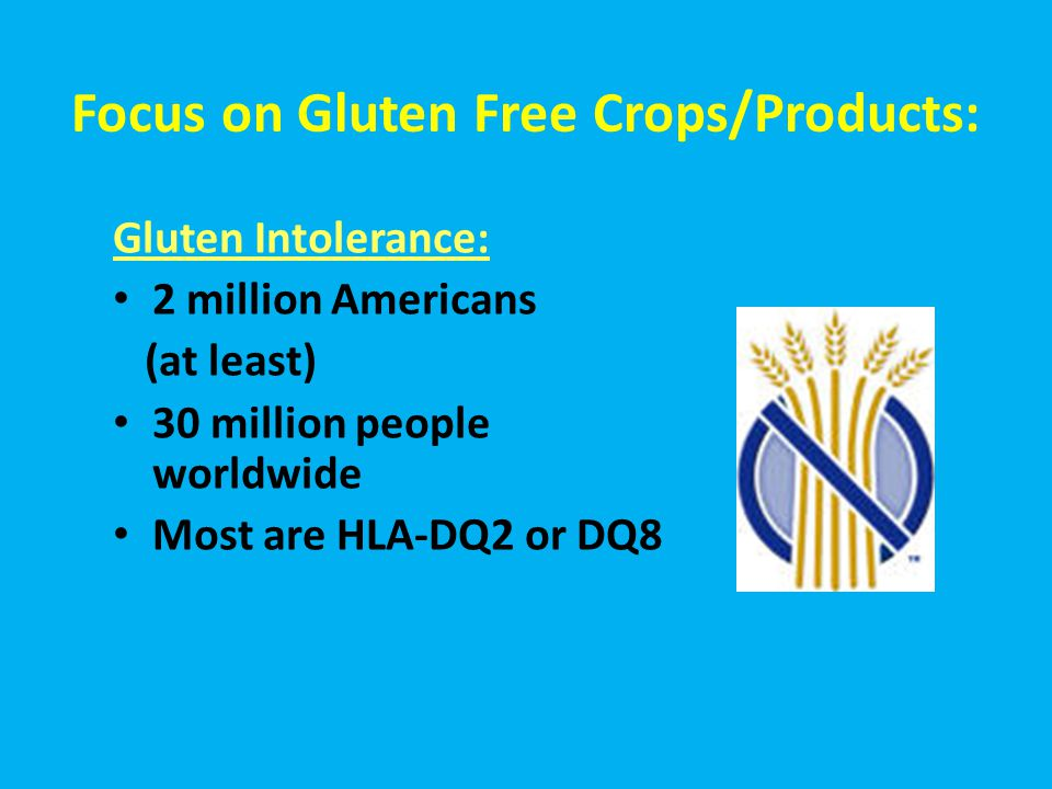 Focus on Gluten Free Crops/Products: