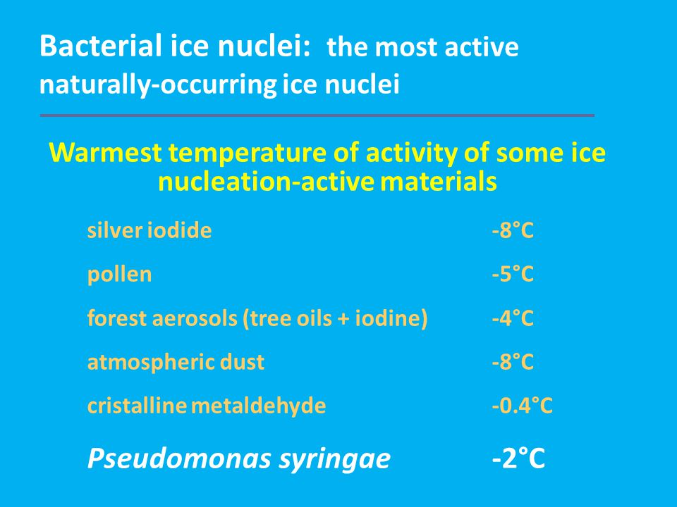 Bacterial ice nuclei: the most active naturally-occurring ice nuclei