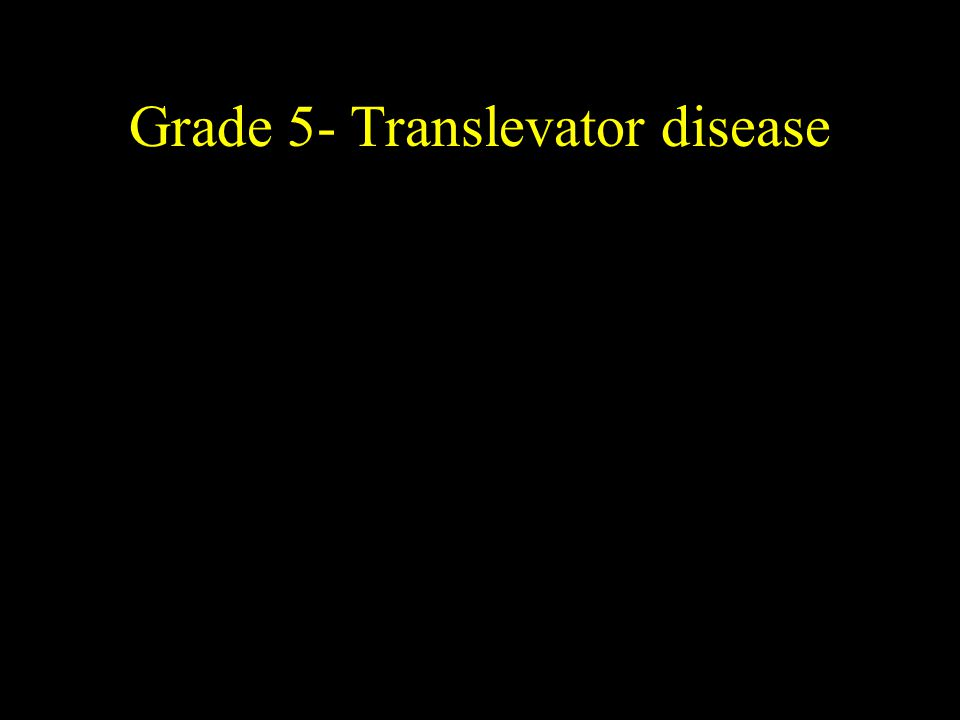 Grade 5- Translevator disease