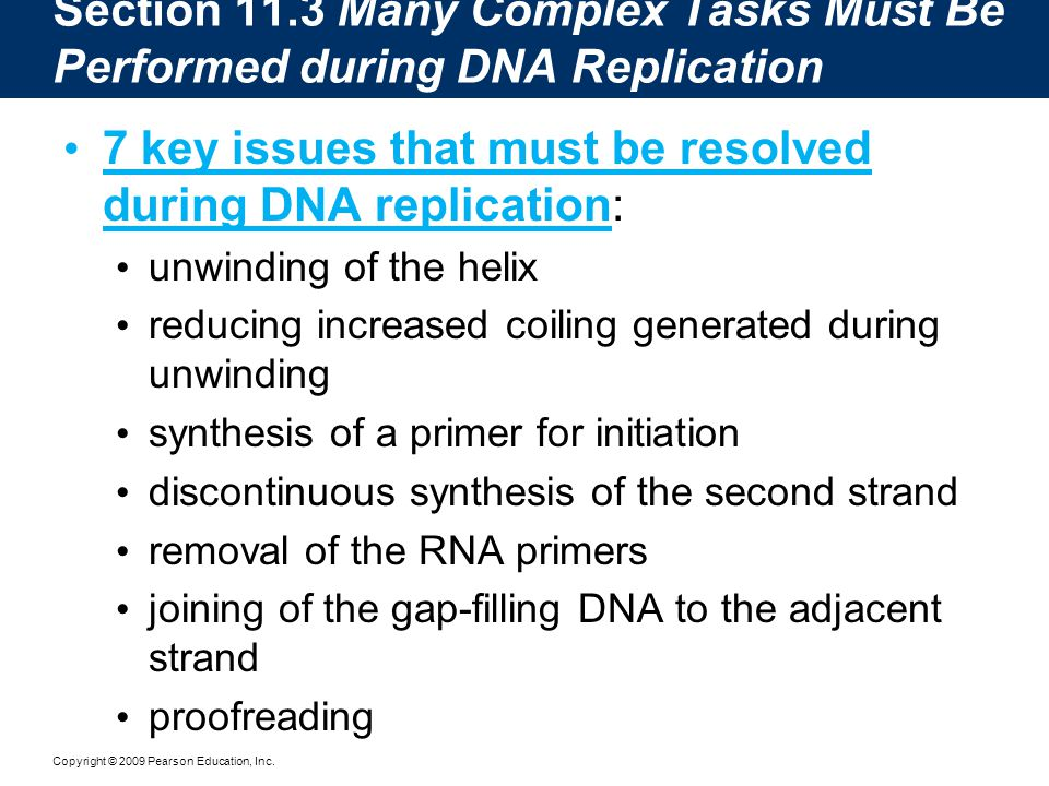 7 key issues that must be resolved during DNA replication: