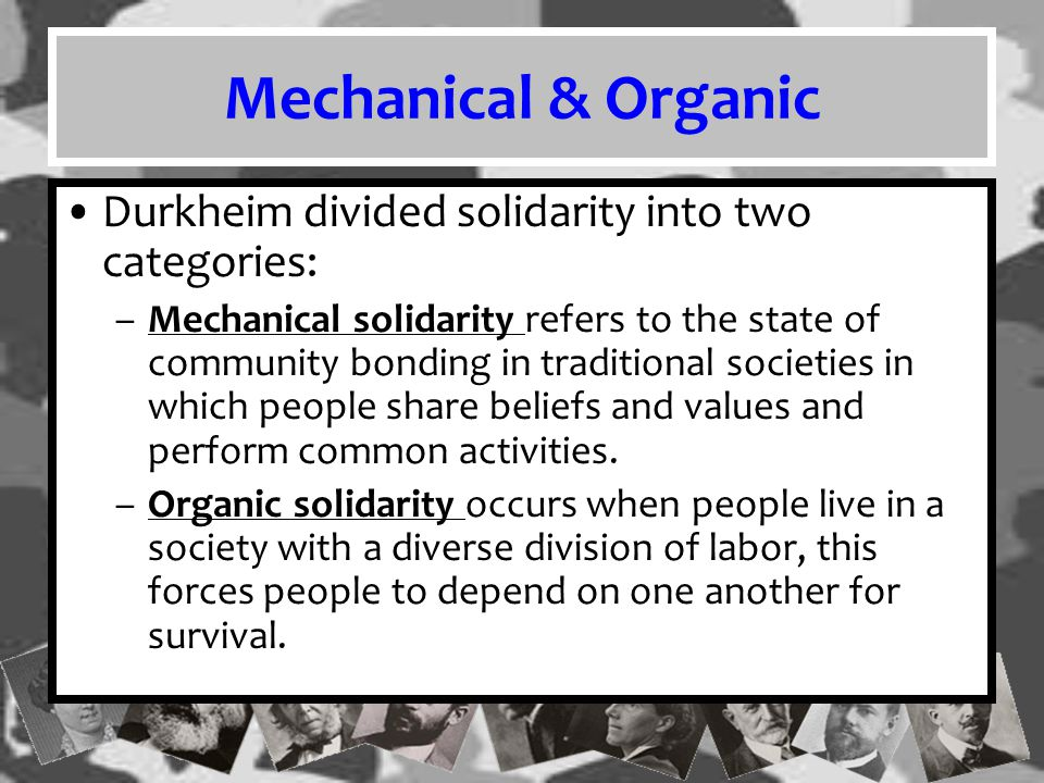 Mechanical & Organic Durkheim divided solidarity into two categories: