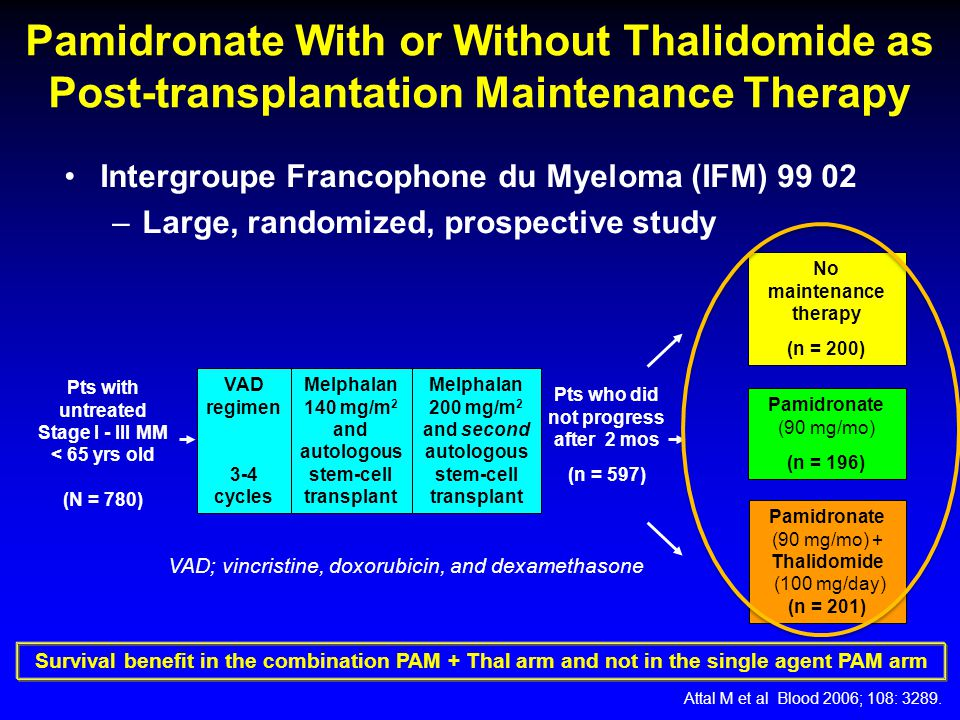 Pamidronate With or Without Thalidomide as Post-transplantation Maintenance Therapy