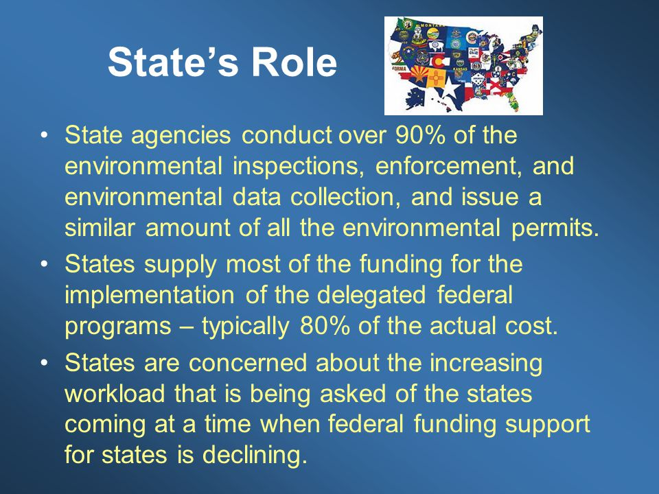 State's Role