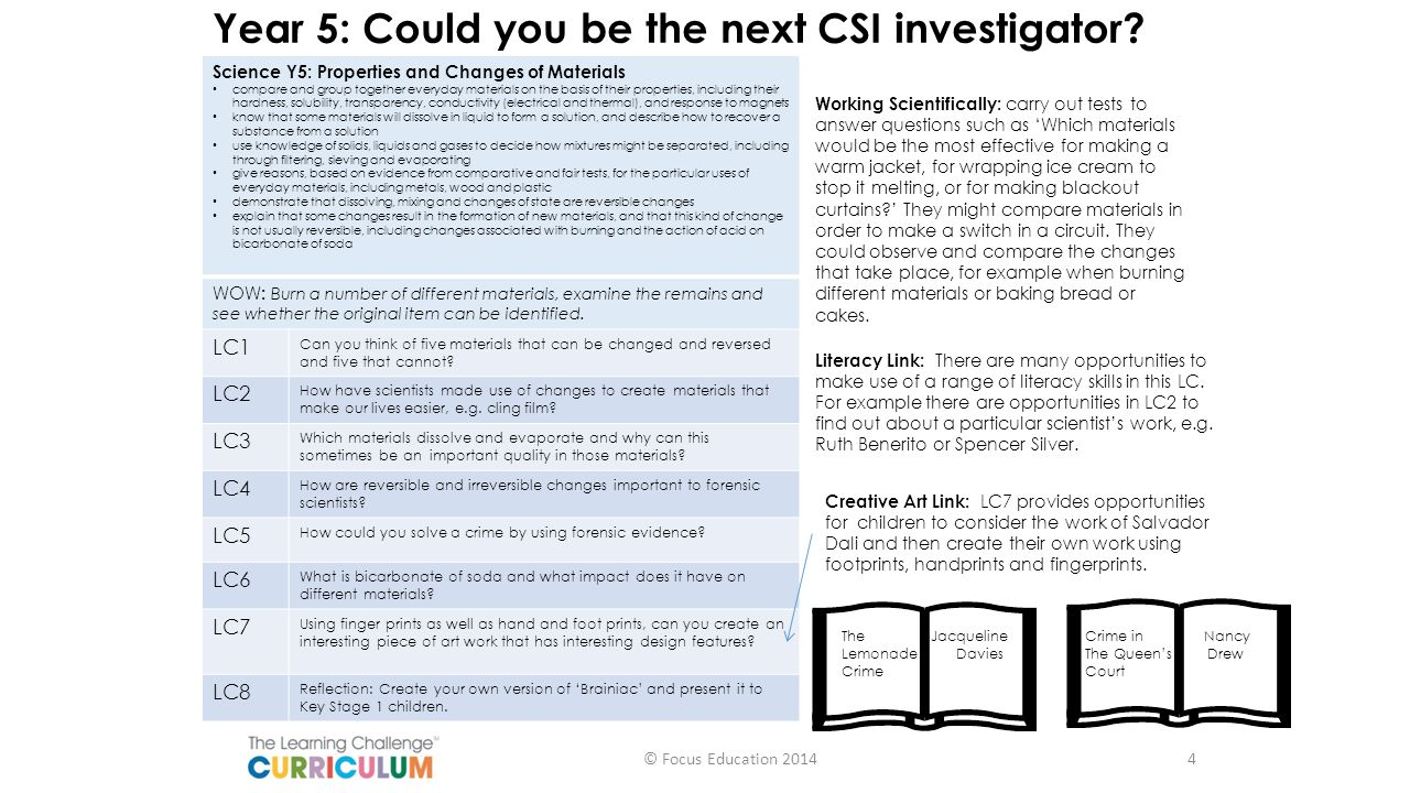 Year 5: Could you be the next CSI investigator