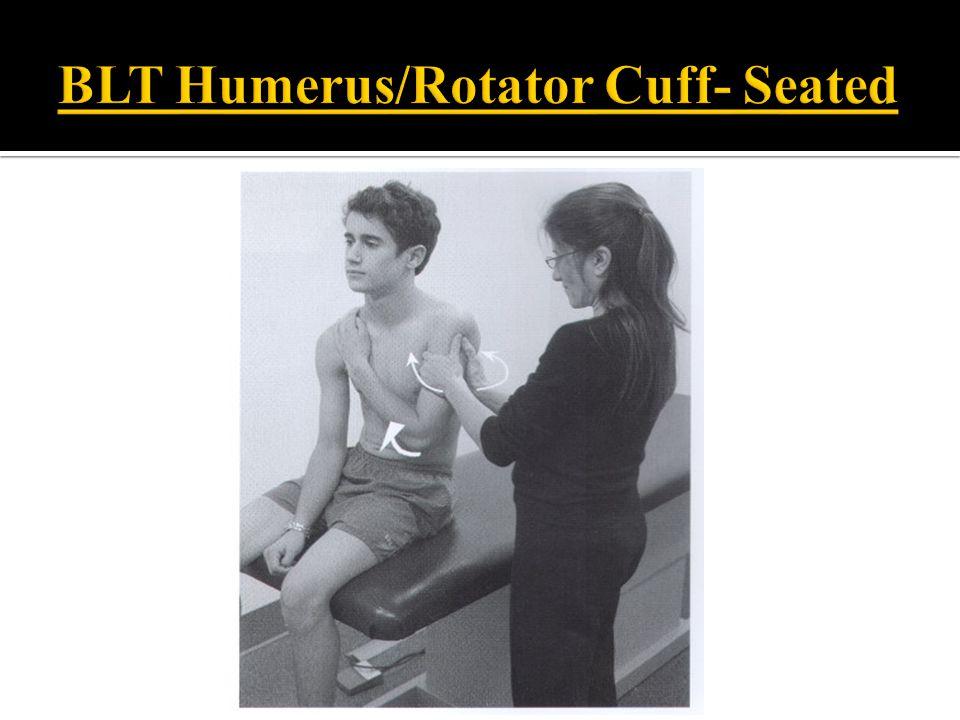 BLT Humerus/Rotator Cuff- Seated