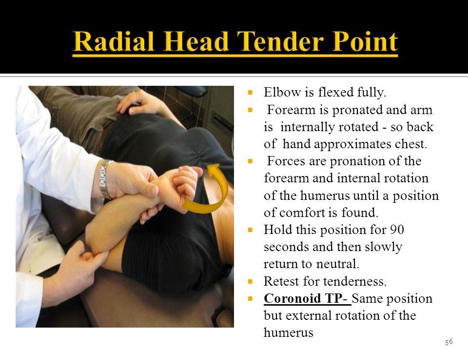 Radial Head Tender Point