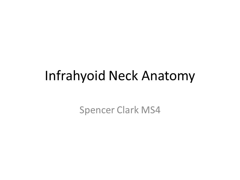 Infrahyoid Neck Anatomy