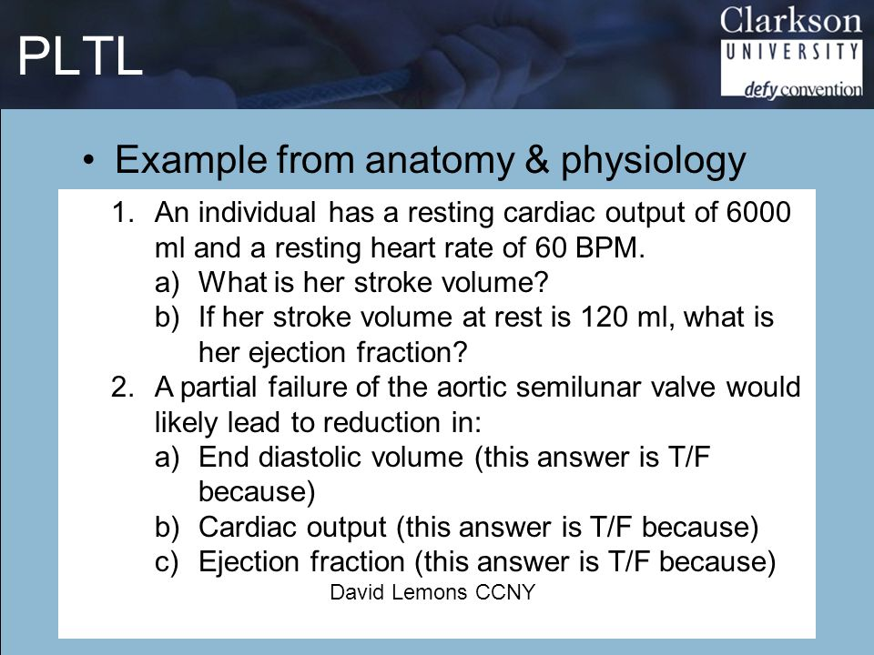 PLTL Example from anatomy & physiology
