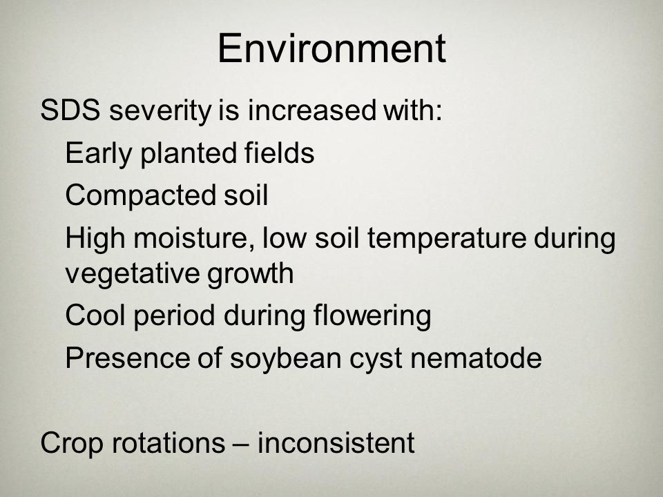 Environment SDS severity is increased with: Early planted fields