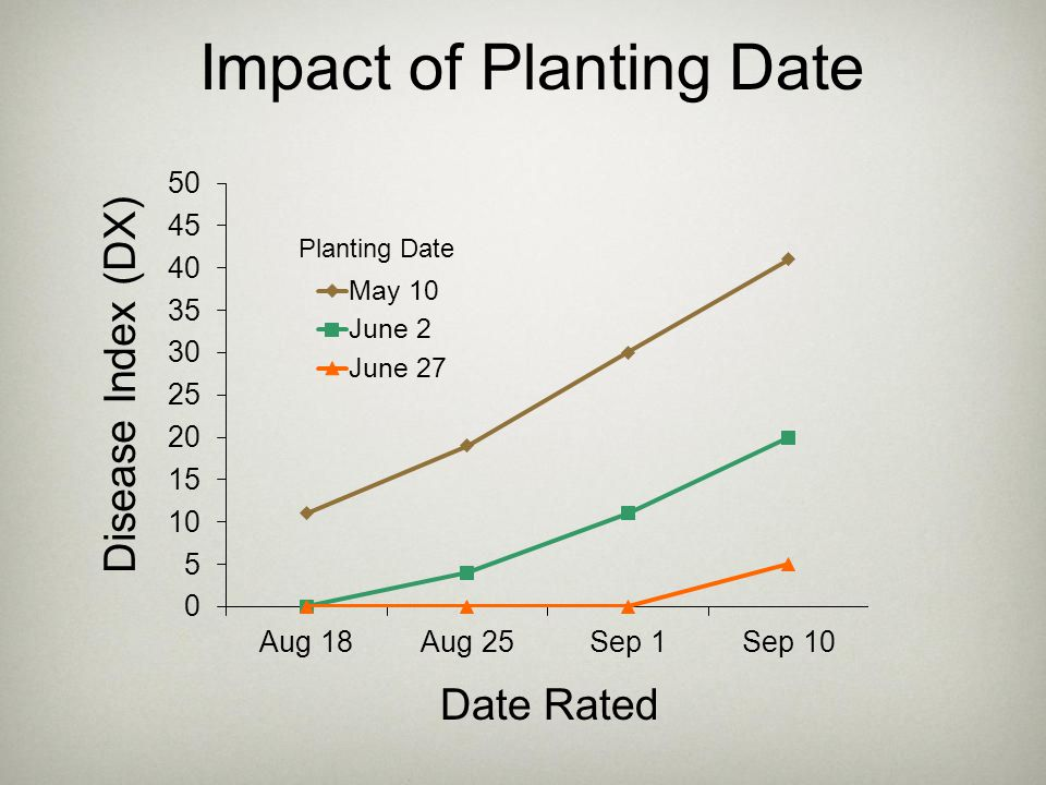 Impact of Planting Date
