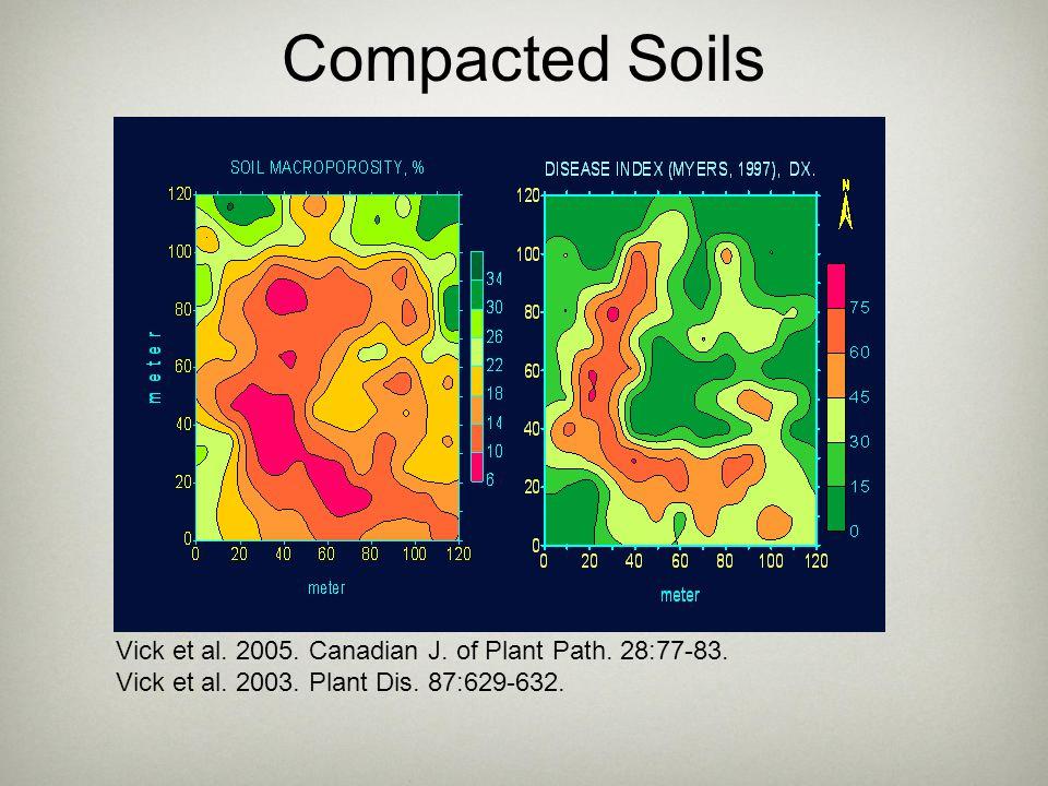 Compacted Soils Vick et al. 2005. Canadian J. of Plant Path. 28:77-83.