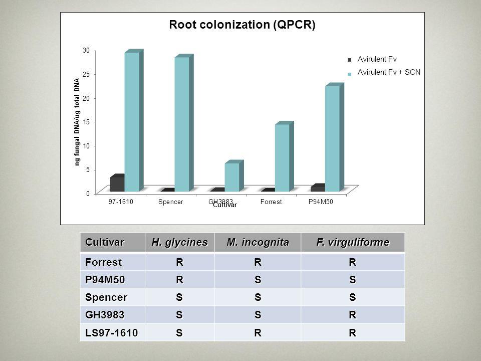 H. glycines M. incognita F. virguliforme R S