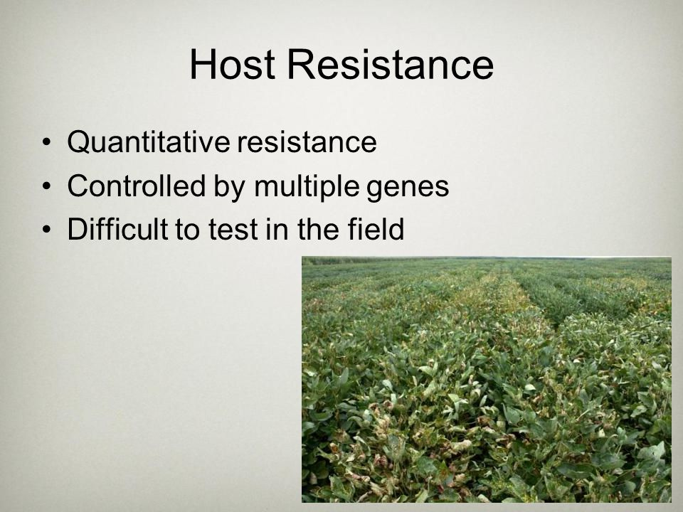 Host Resistance Quantitative resistance Controlled by multiple genes