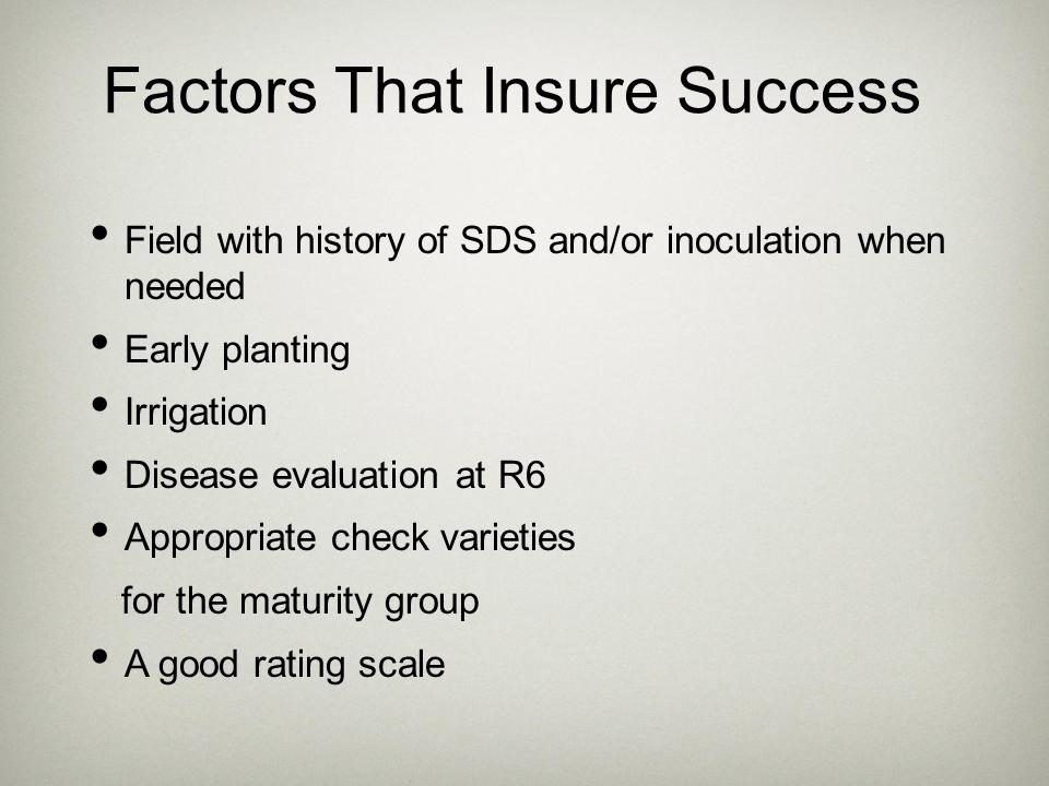 Factors That Insure Success