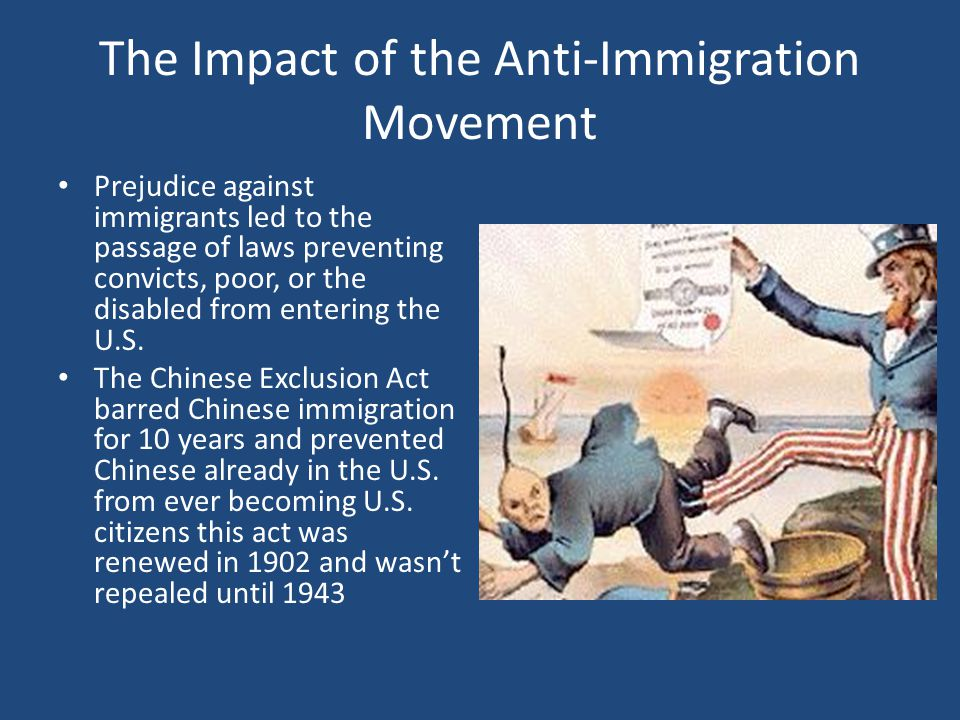 The Impact of the Anti-Immigration Movement
