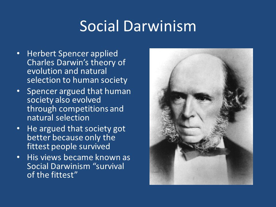 Social Darwinism Herbert Spencer applied Charles Darwin's theory of evolution and natural selection to human society.