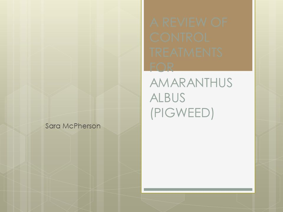 A REVIEW OF CONTROL TREATMENTS FOR AMARANTHUS ALBUS (PIGWEED)