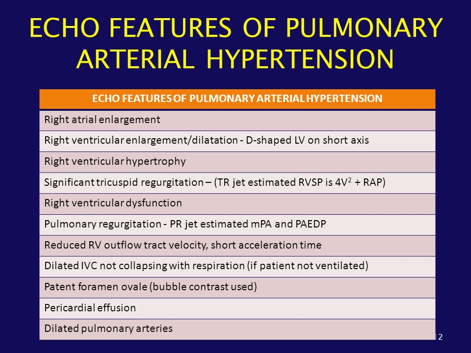 ECHO FEATURES OF PULMONARY ARTERIAL HYPERTENSION