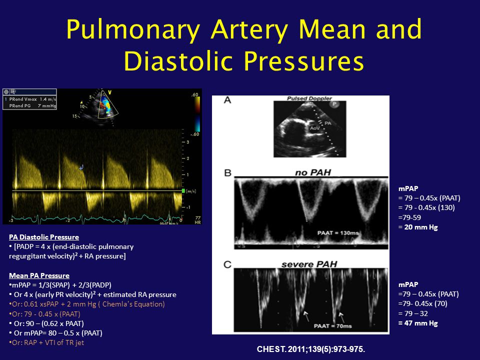 Pulmonary Artery Mean and Diastolic Pressures