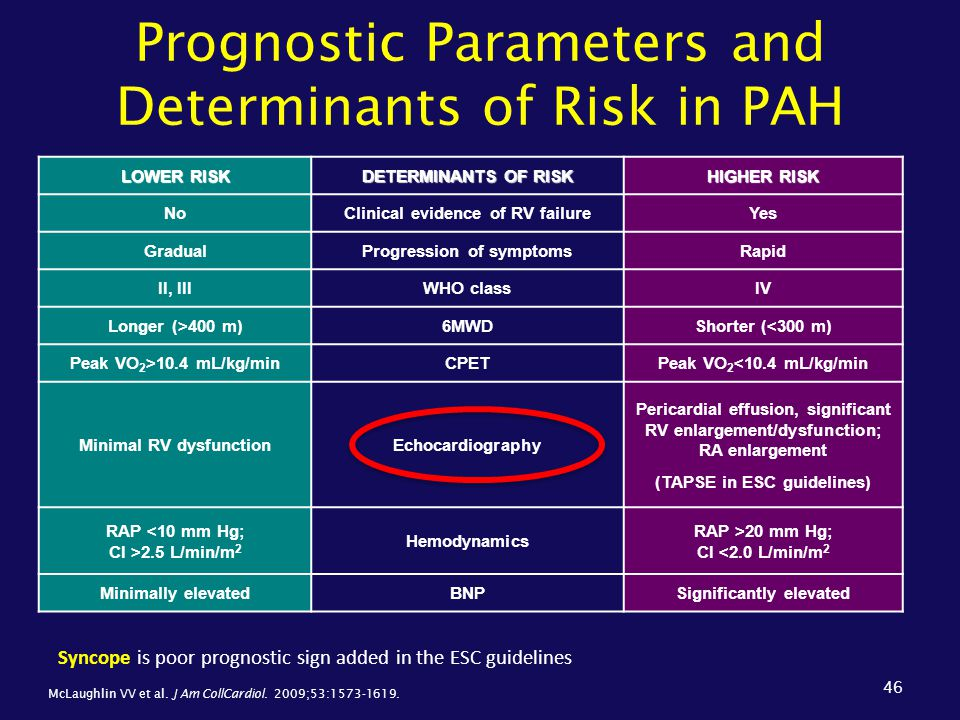 Prognostic Parameters and Determinants of Risk in PAH