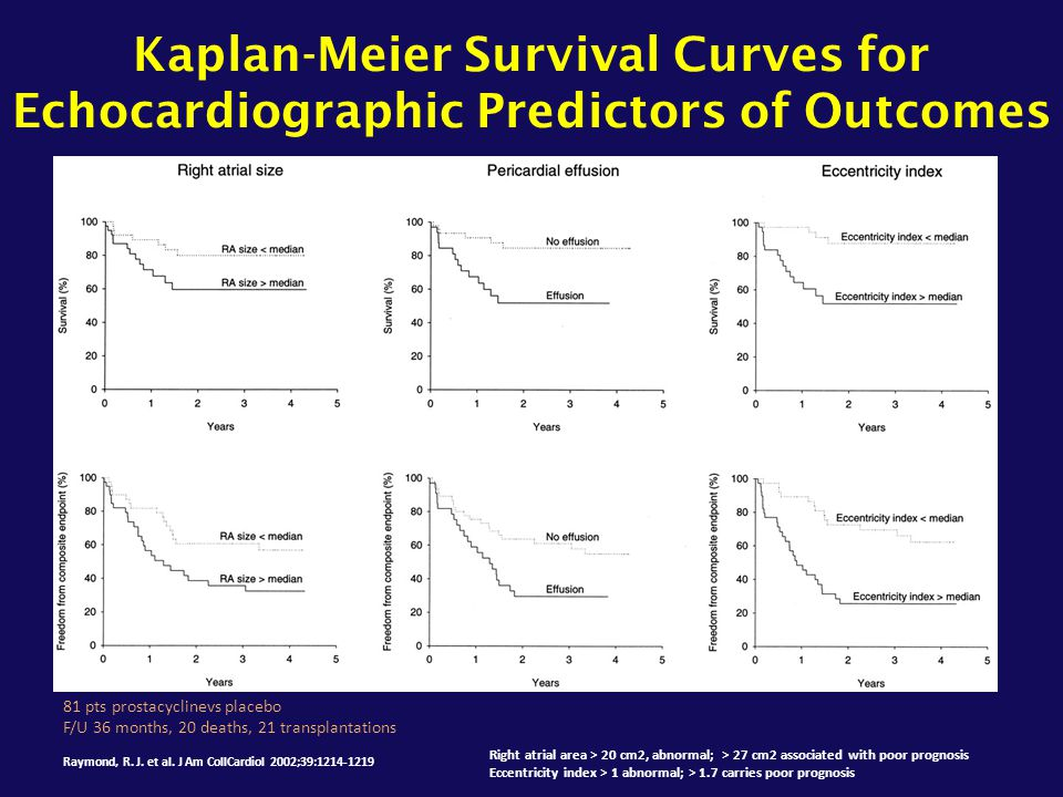 Kaplan-Meier Survival Curves for Echocardiographic Predictors of Outcomes