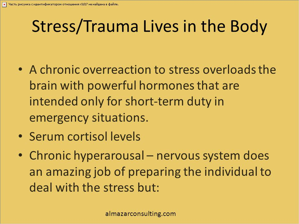 Stress/Trauma Lives in the Body