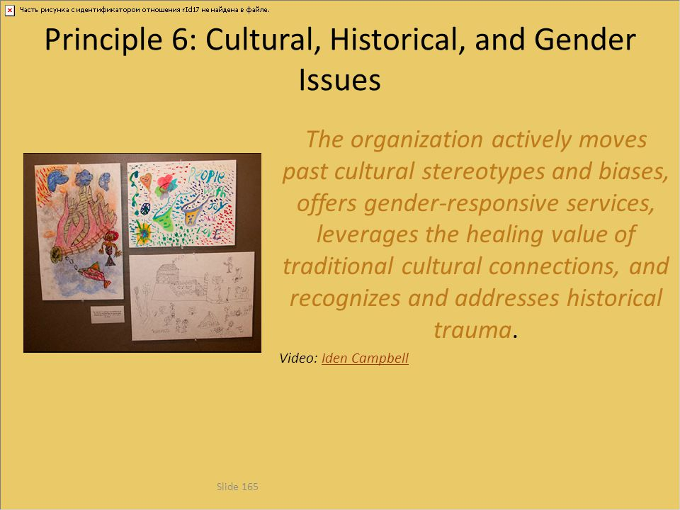 Principle 6: Cultural, Historical, and Gender Issues
