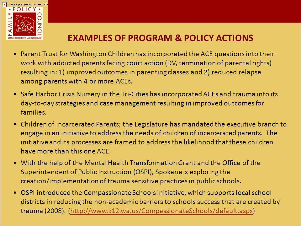 EXAMPLES OF PROGRAM & POLICY ACTIONS
