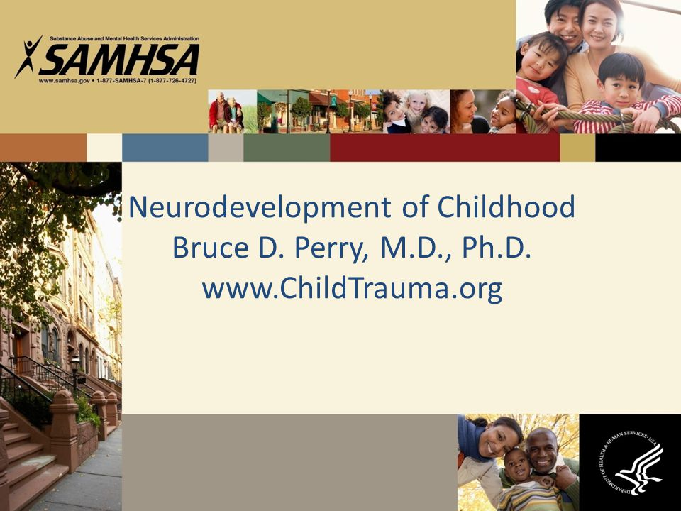 Neurodevelopment of Childhood Bruce D. Perry, M. D. , Ph. D. www