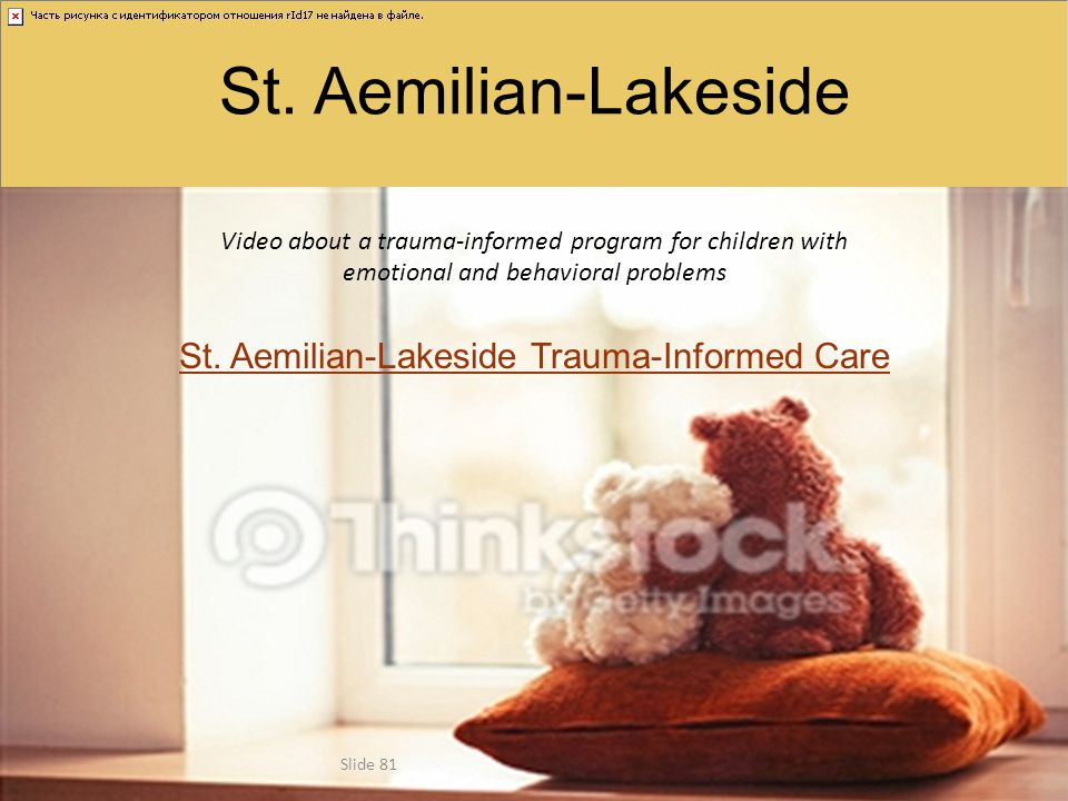 St. Aemilian-Lakeside Trauma-Informed Care