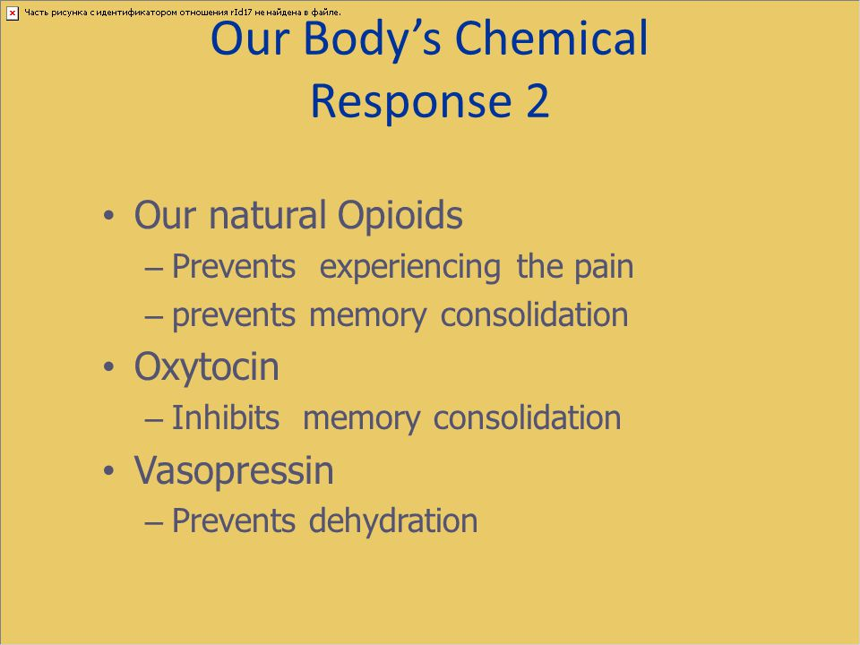 Our Body's Chemical Response 2