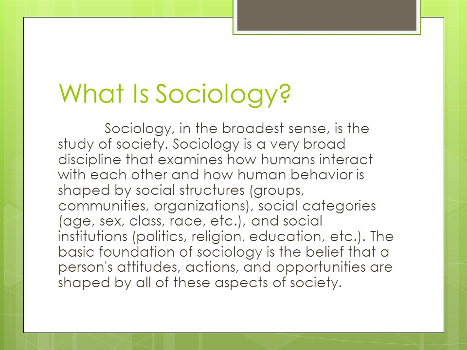 What Is Sociology