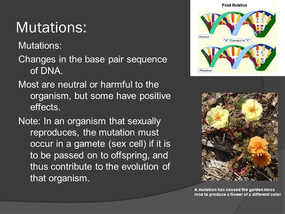 Mutations: