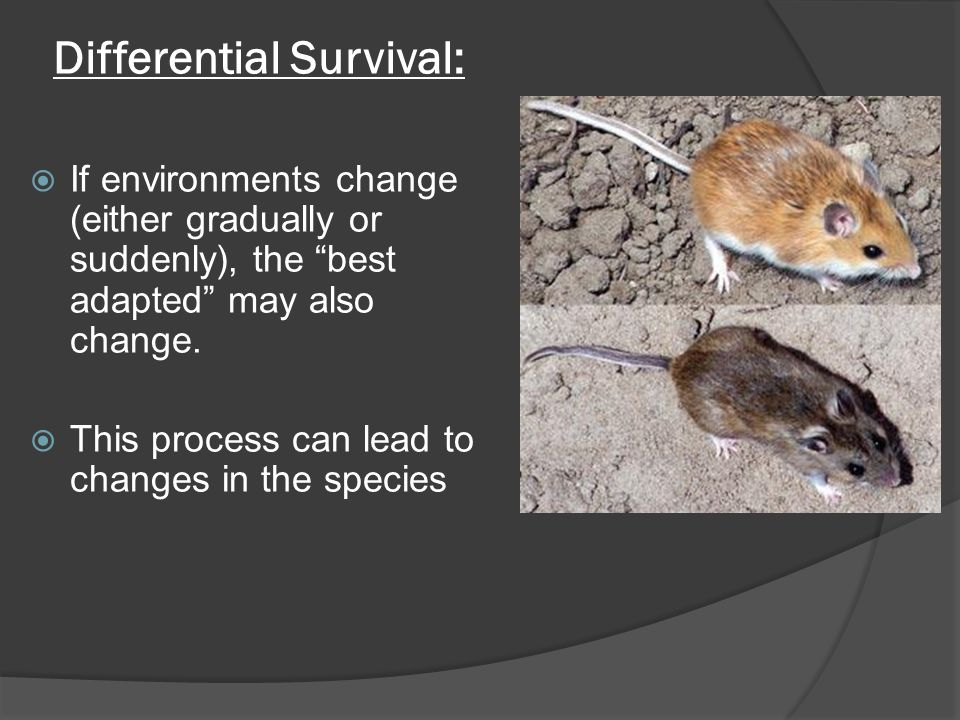Differential Survival: