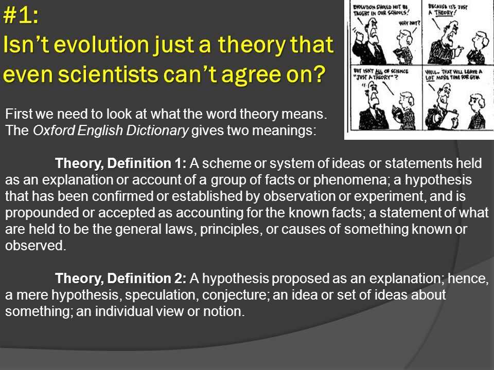 #1: Isn't evolution just a theory that even scientists can't agree on