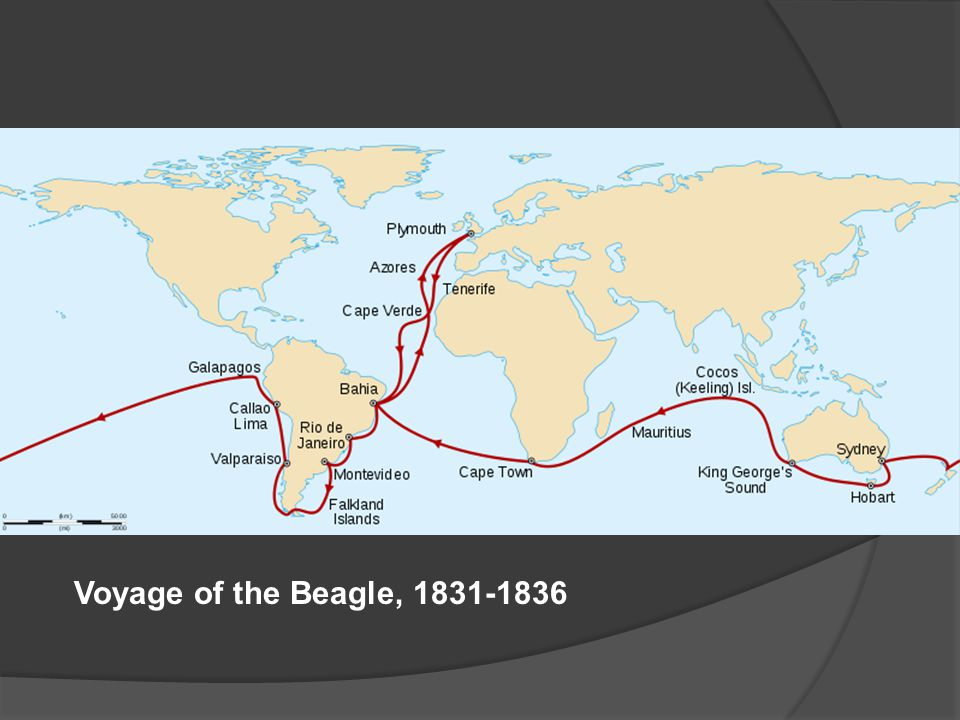 Voyage of the Beagle, 1831-1836
