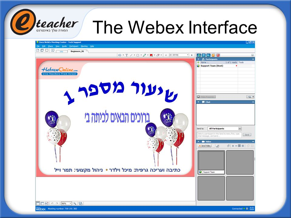 The Webex Interface