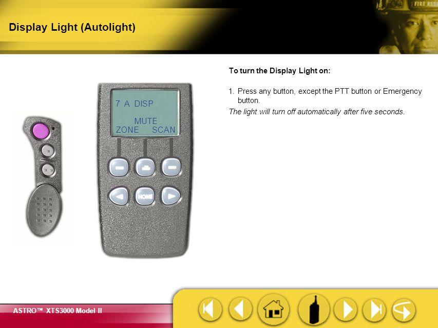 Display Light (Autolight)