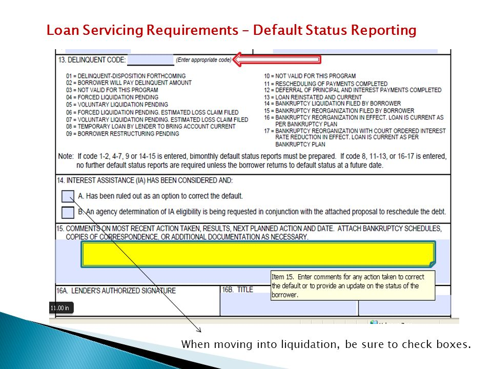 Loan Servicing Requirements – Default Status Reporting