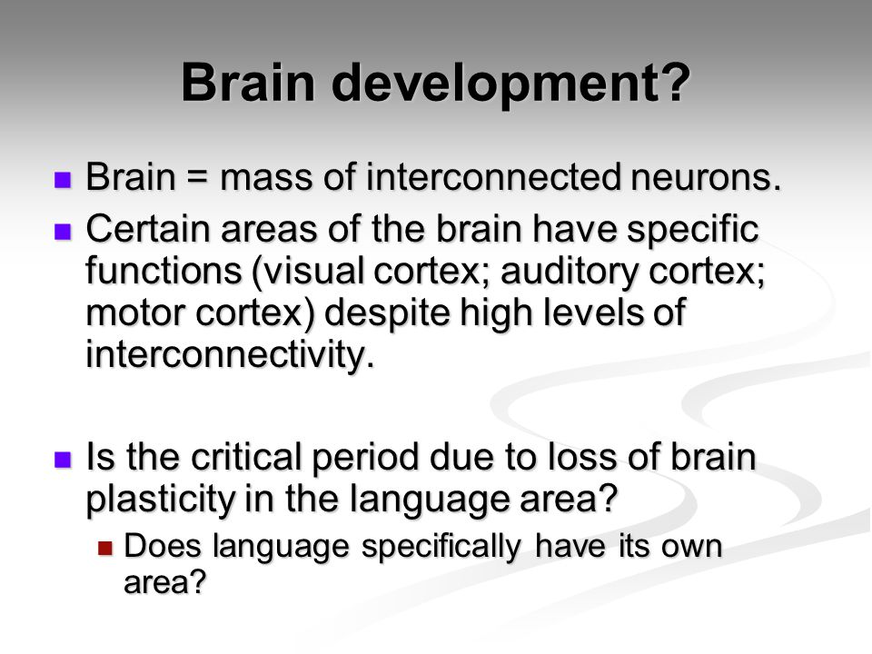 Brain development Brain = mass of interconnected neurons.