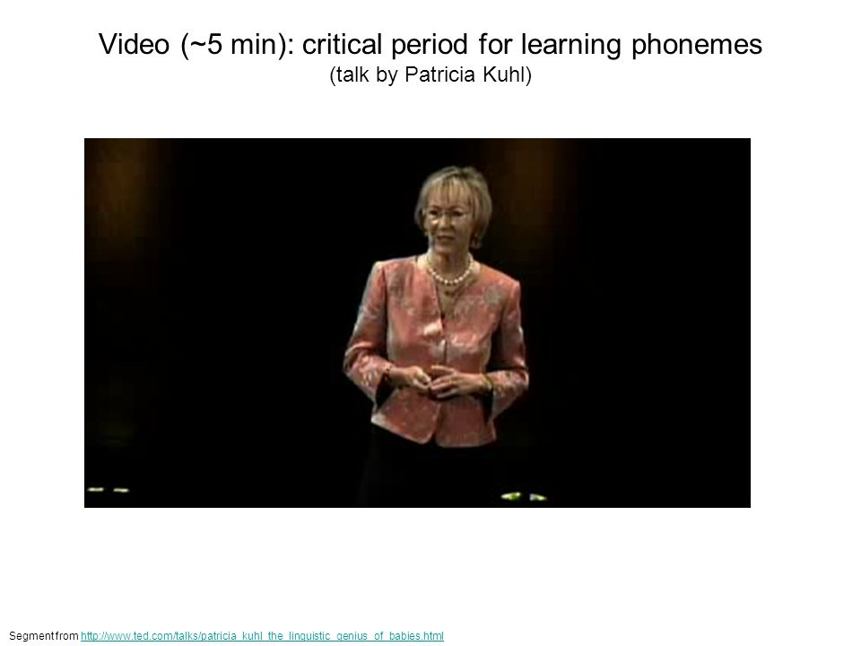 Video (~5 min): critical period for learning phonemes (talk by Patricia Kuhl)