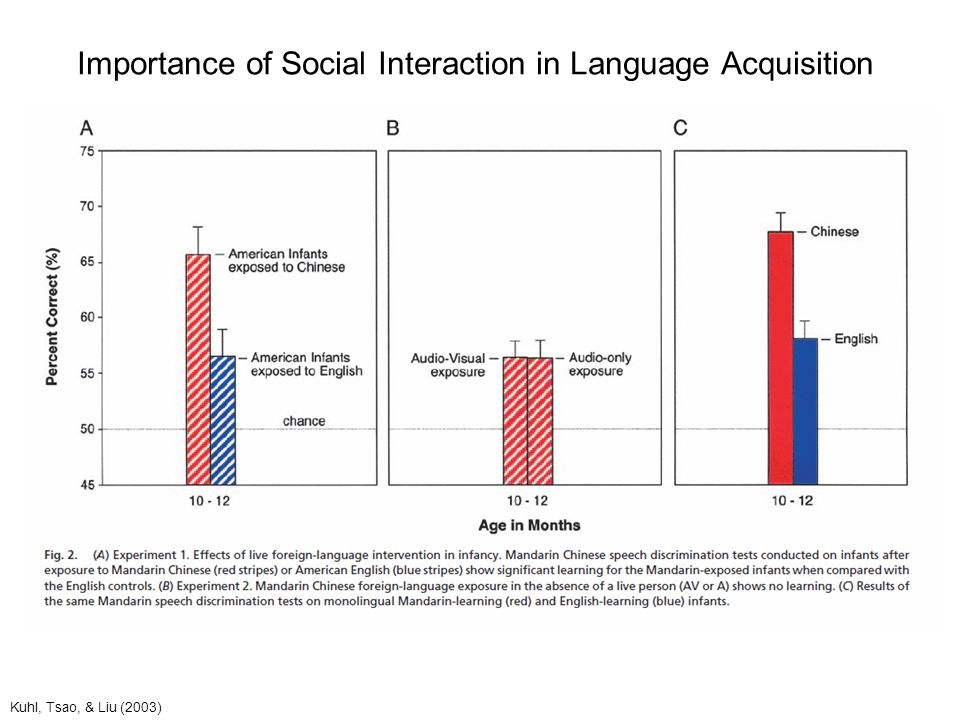 Importance of Social Interaction in Language Acquisition