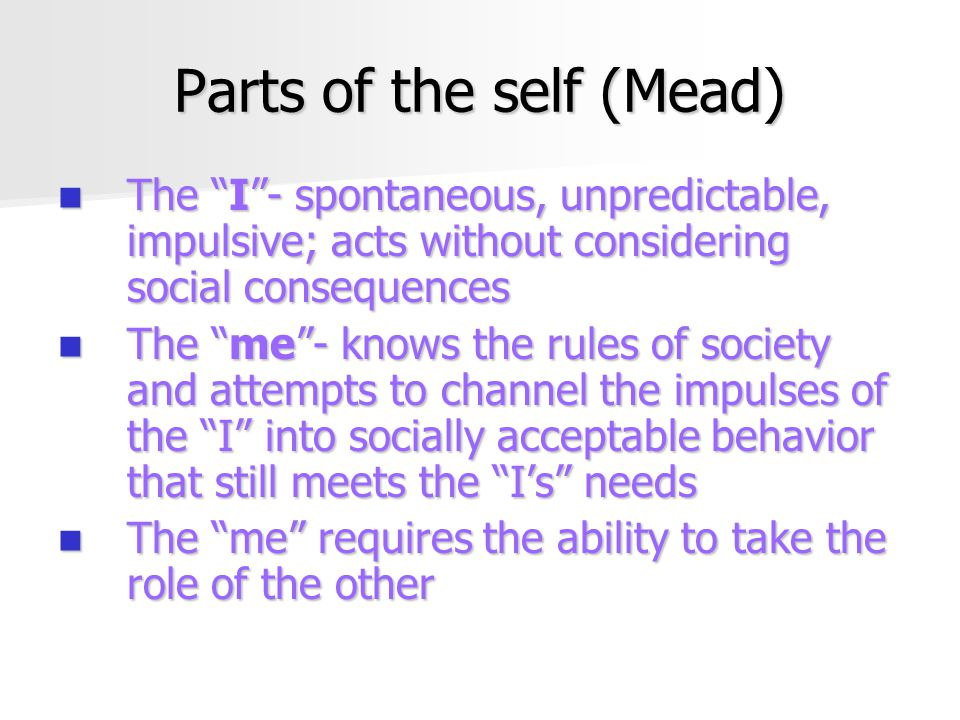 Parts of the self (Mead)