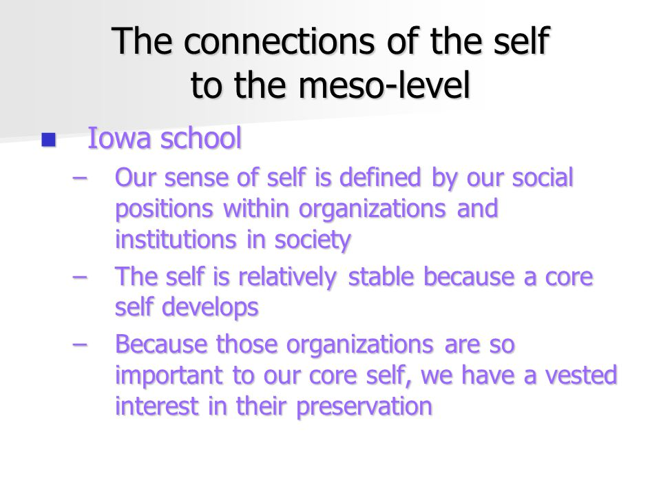 The connections of the self to the meso-level