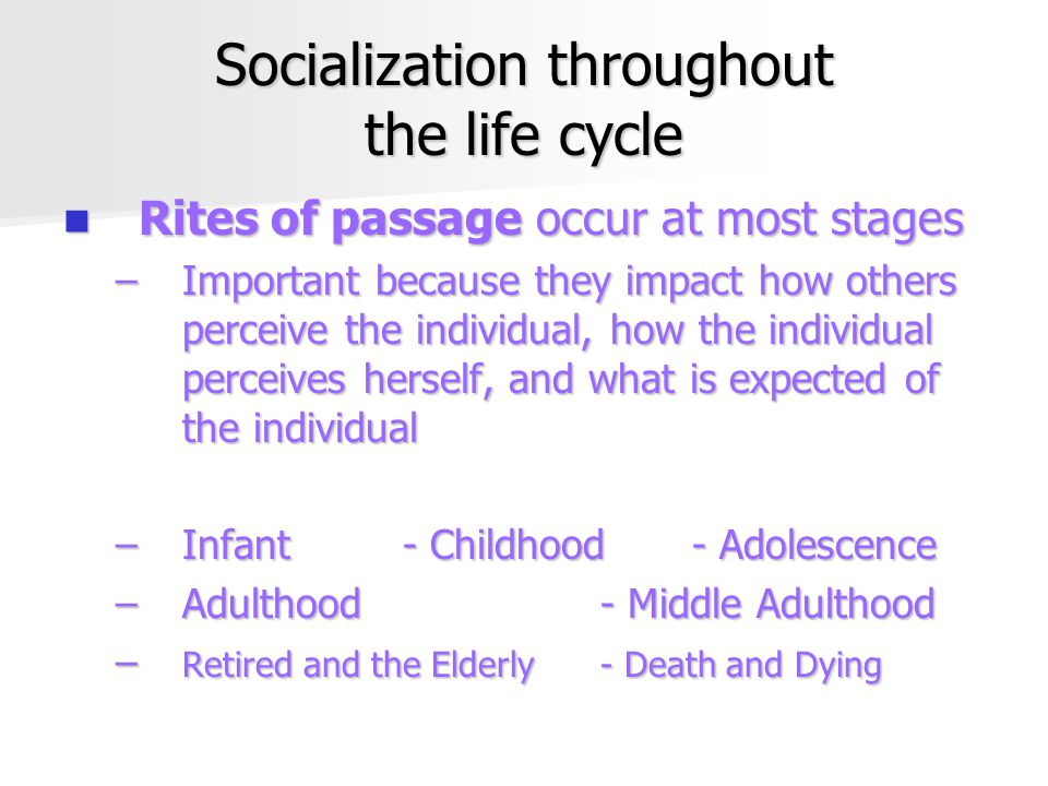 Socialization throughout the life cycle