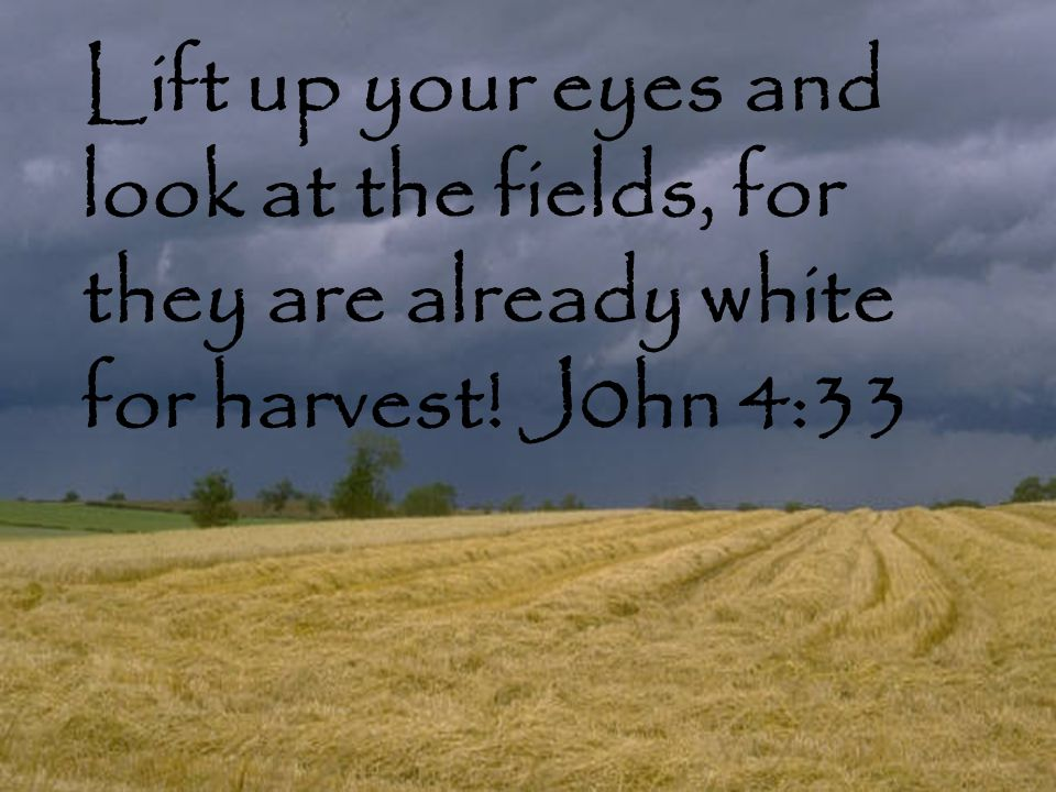 Lift up your eyes and look at the fields, for they are already white for harvest! J0hn 4:33